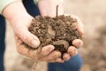 Soil Civil Eats