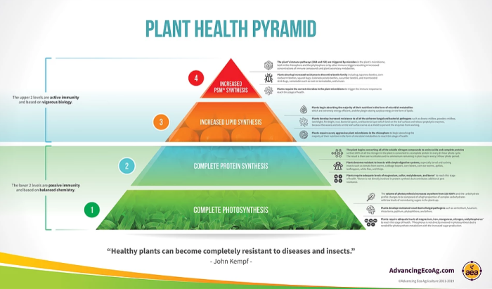 Plant health pyramid infographic John Kempf.PNG